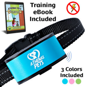 Humane Dog Bark Collar
