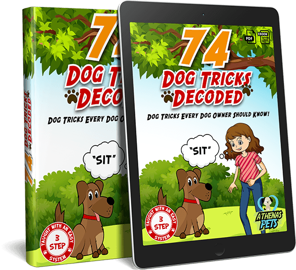 74 Dog Tricks Decoded, Dog and Puppy Training