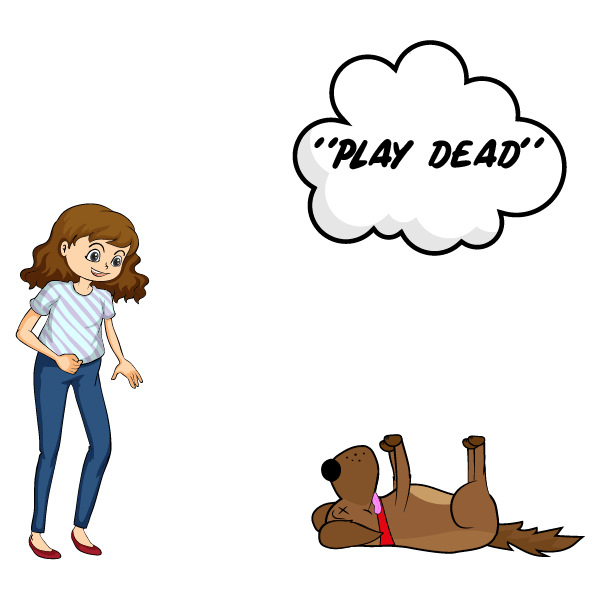 How to Teach a Dog to Play Dead